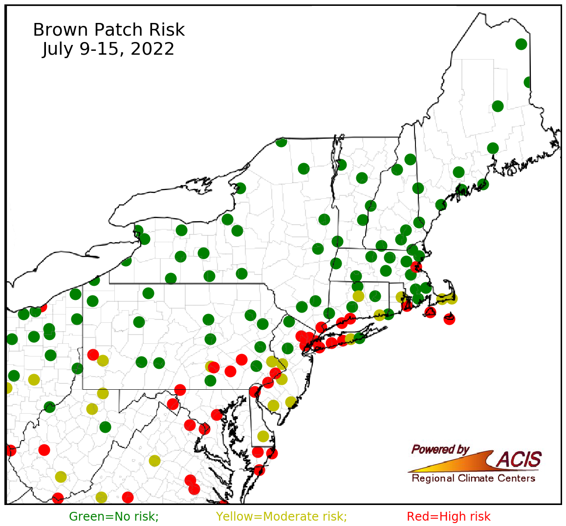 brown patch