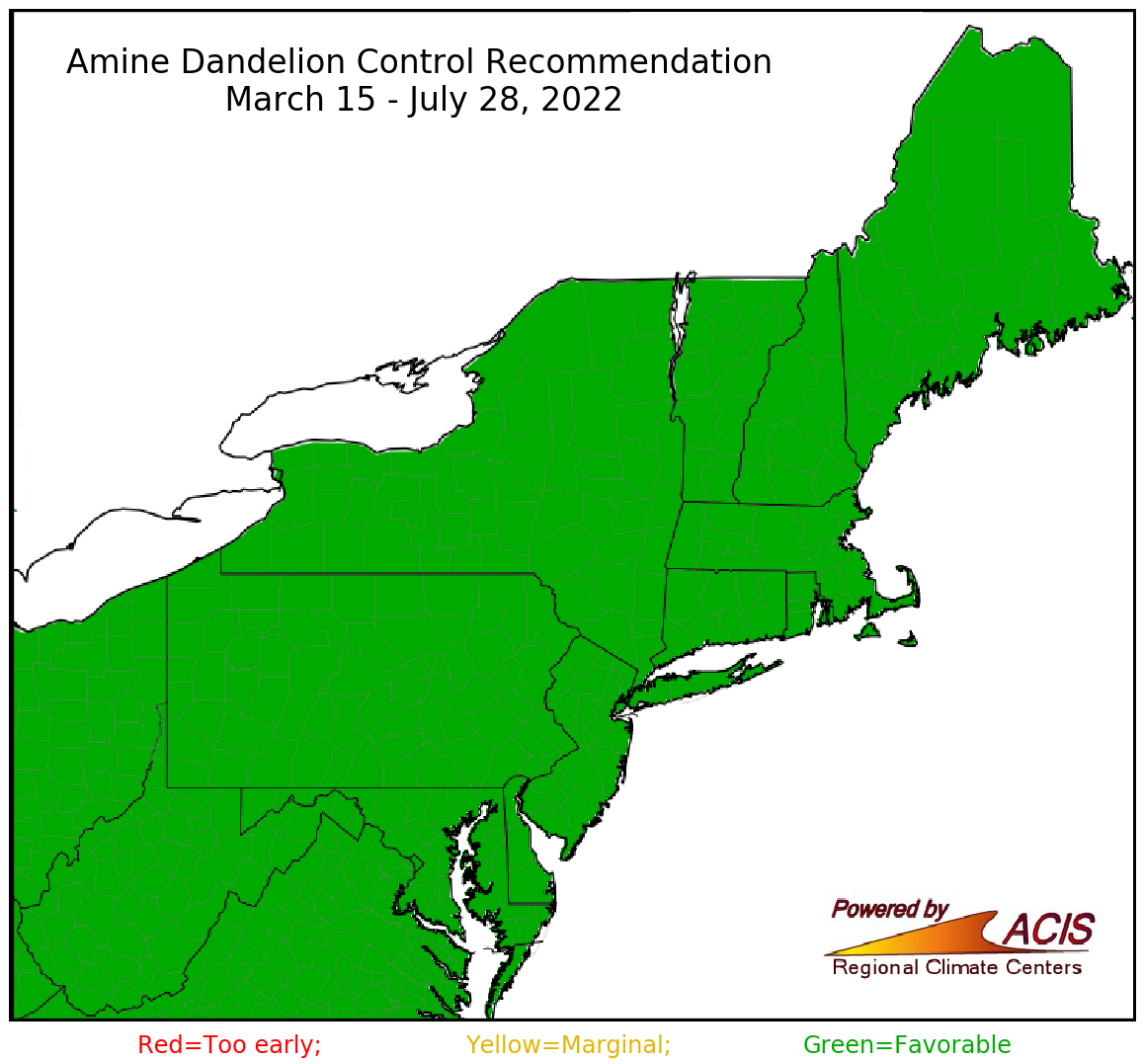 amine dandelion control recommendation