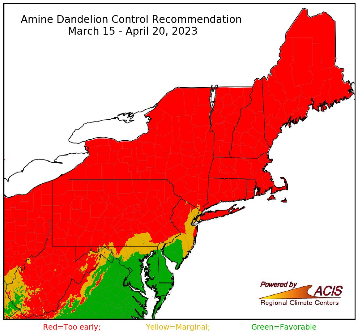 amine dandelion control recommendation