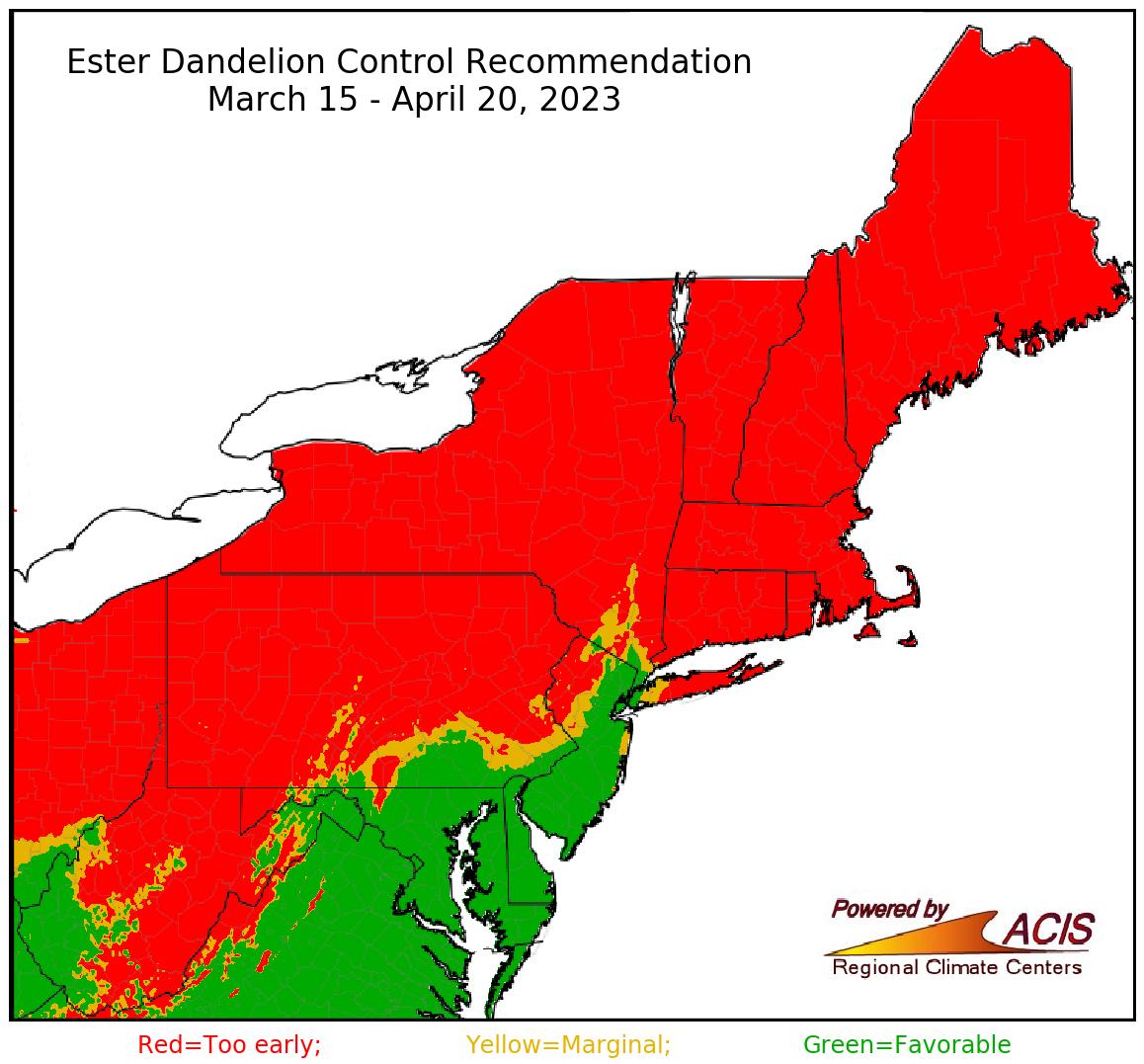 ester dandelion control recommendation