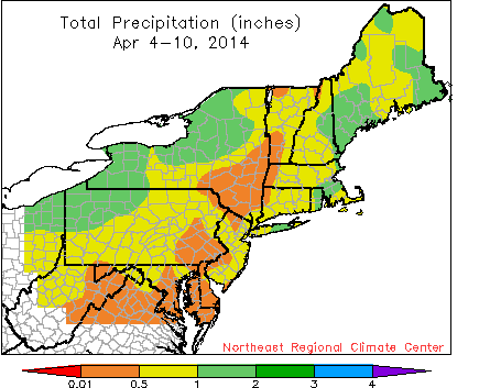 total precip